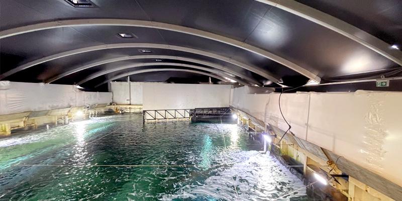 Stronghold Hire - Sydney Aquarium Shrink Wrap